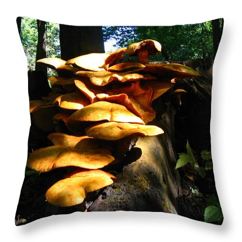 Fungus Colony Throw Pillow featuring the photograph Fungus Colony 23 by Maciek Froncisz