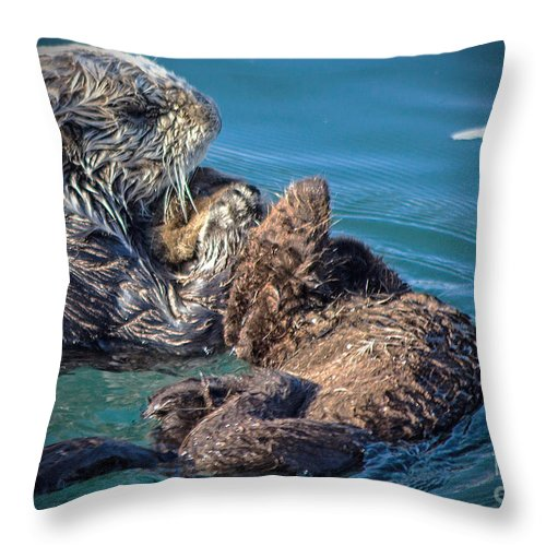 Otters Throw Pillow featuring the photograph Furry Nurturance by Kris Hiemstra