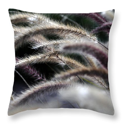 Clay Throw Pillow featuring the photograph Fuzzy by Clayton Bruster