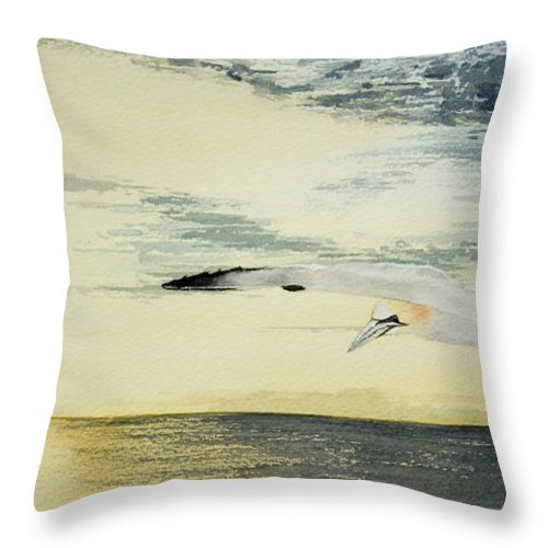 Dusk Throw Pillow featuring the painting Gannet At Dusk by Alan Pickersgill