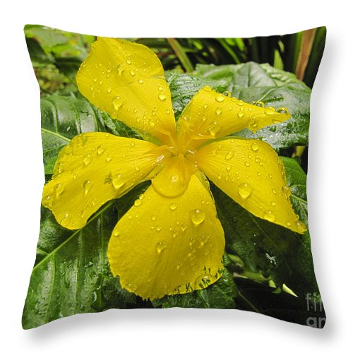 Coral Throw Pillow featuring the photograph Garden Flower In Kwajalein by Dan Norton