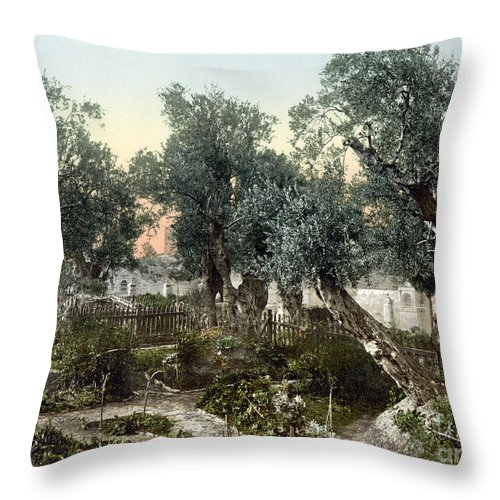 1900 Throw Pillow featuring the photograph Garden Of Gethsemane by Granger