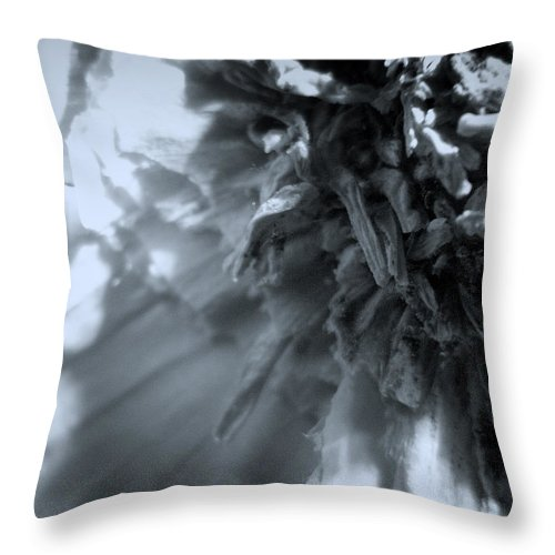 Garlic Throw Pillow featuring the photograph Garlic-up Close And Personal by Scott Wyatt