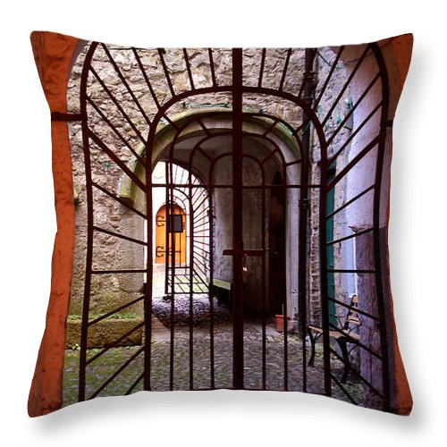 Gate Throw Pillow featuring the photograph Gated Passage by Tim Nyberg