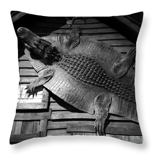Alligator Throw Pillow featuring the photograph Gator Hide by David Lee Thompson