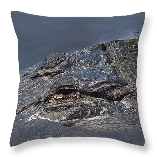 Alligator Throw Pillow featuring the photograph Gator - Too Close by Vicki Berchtold