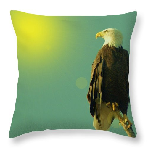 Eagles Throw Pillow featuring the photograph Gazing Sunward by Jeff Swan