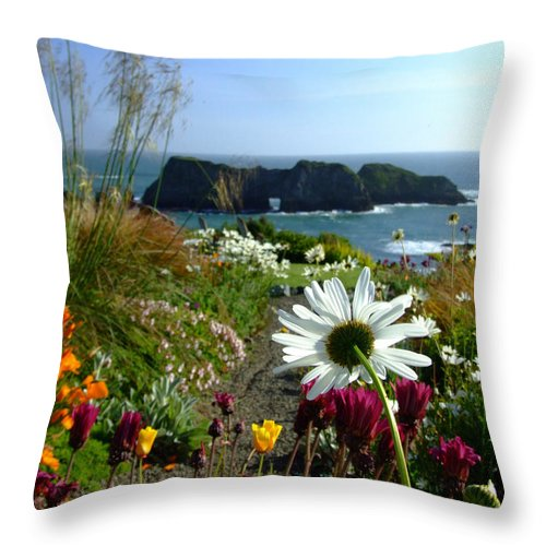 Daisy Throw Pillow featuring the photograph Gazing Toward The Sea by Donna Blackhall