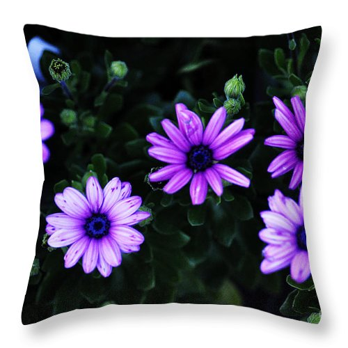Clay Throw Pillow featuring the photograph Gears by Clayton Bruster