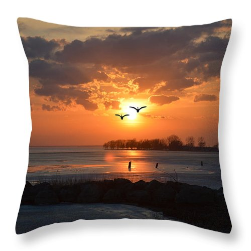 Sunset Throw Pillow featuring the photograph Geese At Sunset by Barbara Treaster