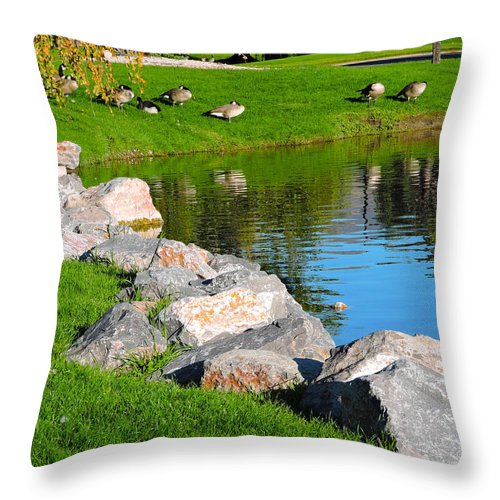 Geese Retreat Throw Pillow featuring the photograph Geese Retreat by Roberts Photography