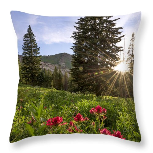 Gem Throw Pillow featuring the photograph Gem by Chad Dutson