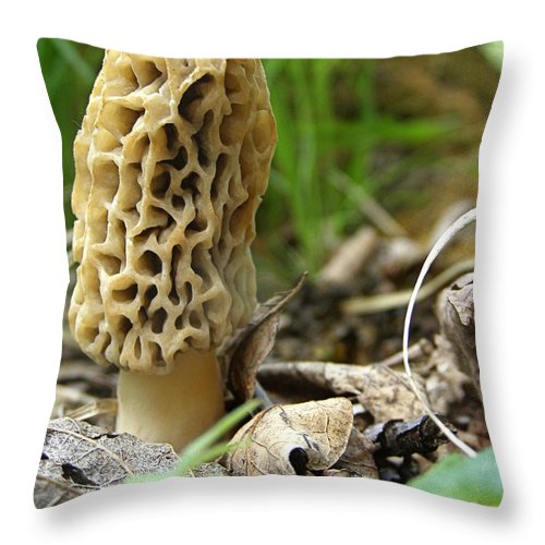 Morel Throw Pillow featuring the photograph Gem Of The Forest - Morel Mushroom by Angie Rea