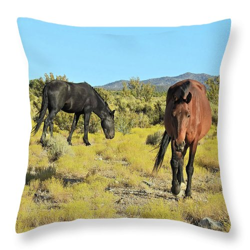 Wild Mustangs Throw Pillow featuring the photograph Gems Of Cold Creek by Sandra O'Toole