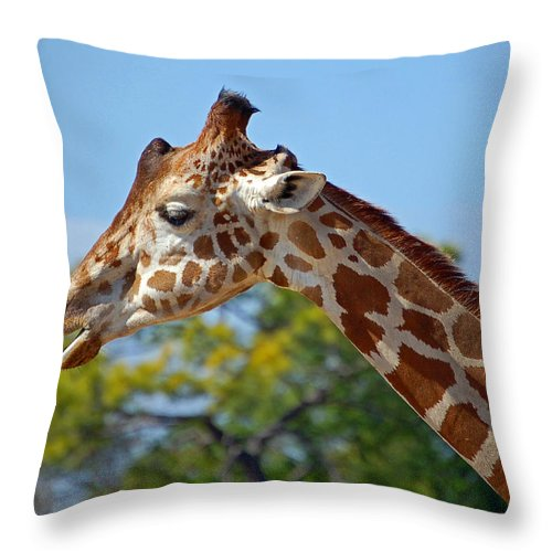 Giraffe Throw Pillow featuring the photograph Gentle Giraffe by Donna Proctor