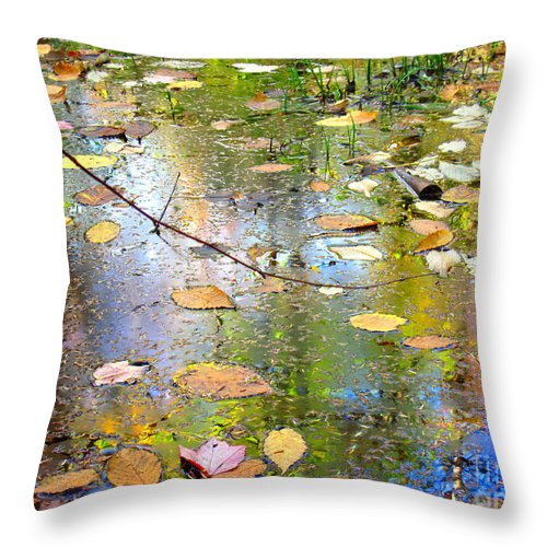 Water Throw Pillow featuring the photograph Gentle Nature by Sybil Staples