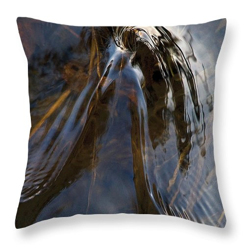 River Throw Pillow featuring the photograph Gentle River Ripple Swirl Vertical by Steve Somerville