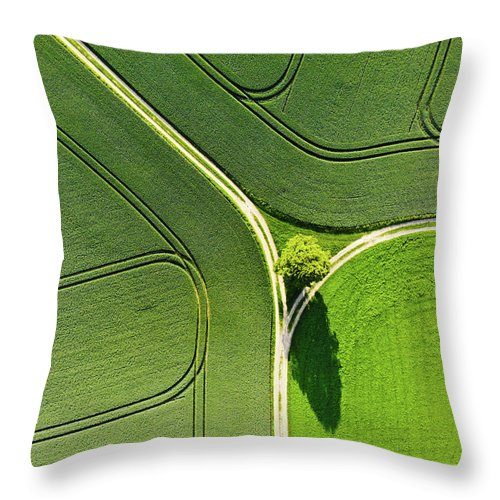 Green Landscape Throw Pillow featuring the photograph Geometric Landscape 05 Tree And Green Fields Aerial View by Matthias Hauser
