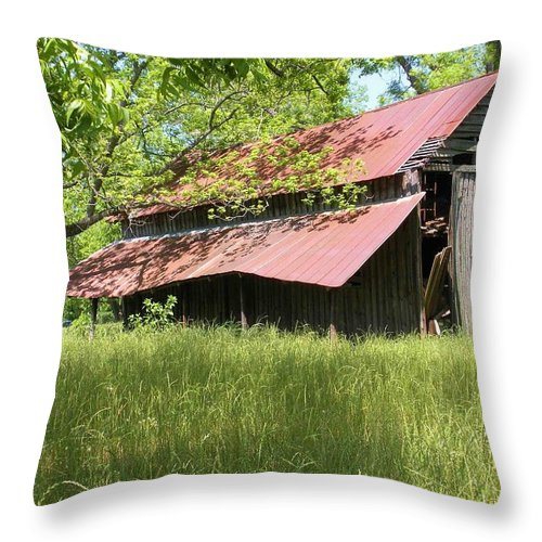Barn Throw Pillow featuring the photograph Georgia Barn by Nelson Strong