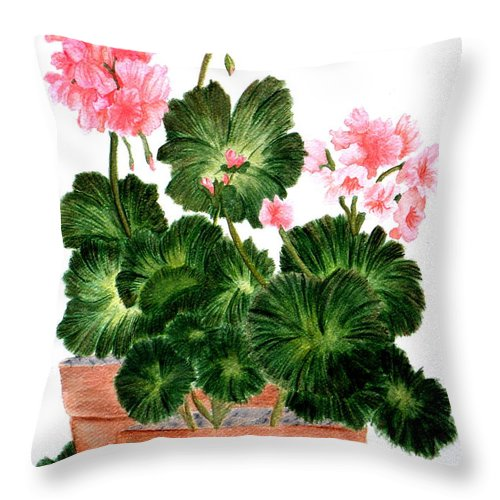 Geraniums Throw Pillow featuring the painting Geraniums In Clay Pots by Terri Mills