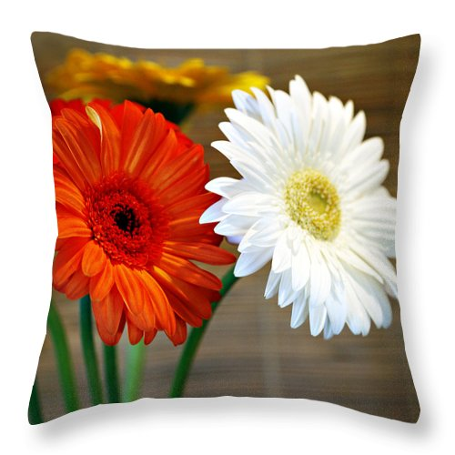 Flower Throw Pillow featuring the photograph Gerbers by Marilyn Hunt