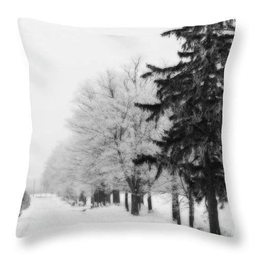 Trees Throw Pillow featuring the photograph Getting Bigger by Cathy Beharriell