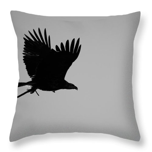 Eagle Throw Pillow featuring the photograph Getting Ready by Diana Hatcher