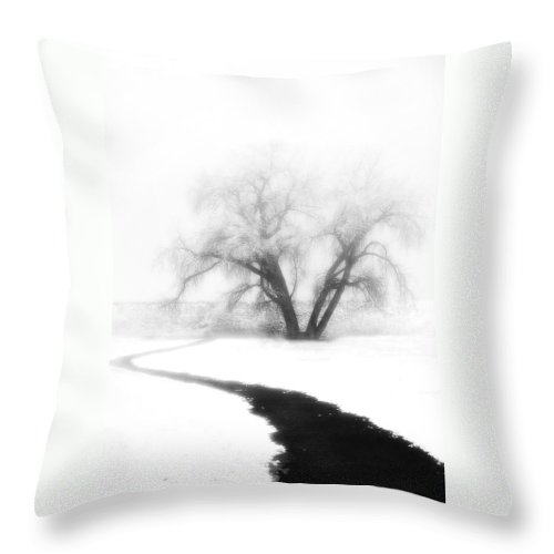 Tree Throw Pillow featuring the photograph Getting There by Marilyn Hunt