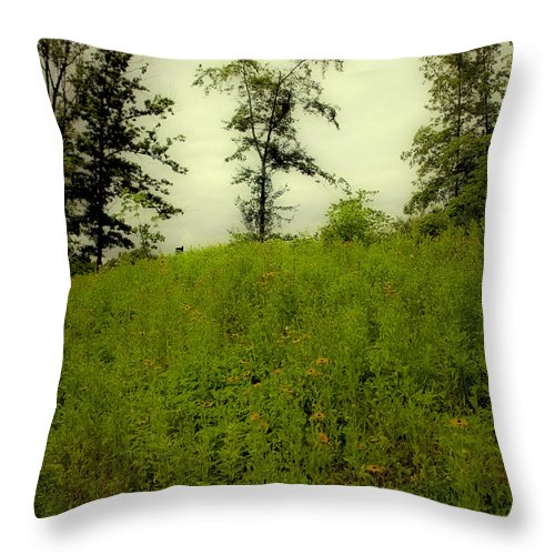 Landscape Throw Pillow featuring the photograph Gettysburg Landscape by Madeline Ellis
