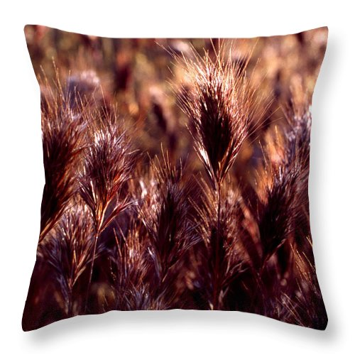 Nature Throw Pillow featuring the photograph Gideon by Randy Oberg