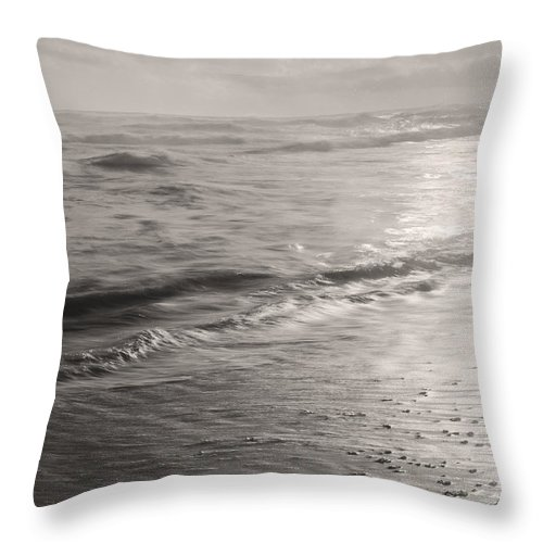 Sea Throw Pillow featuring the photograph Gifts Of The Sea by Gary Bartoloni