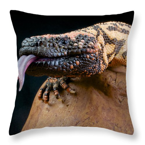 Gila Monster Throw Pillow featuring the photograph Gila Monster by Reptiles4all