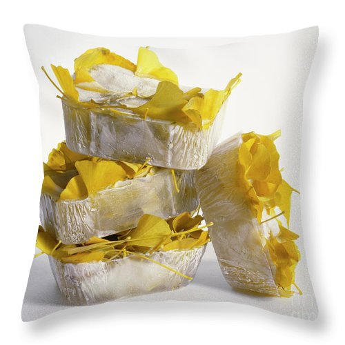 Icy Throw Pillow featuring the photograph Ginkobiloba by Stefania Levi
