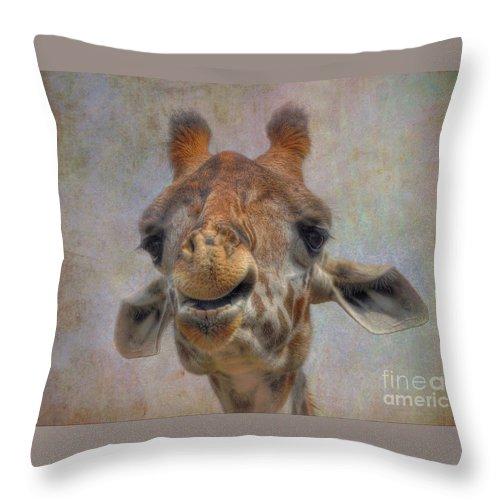 Giraffe Throw Pillow featuring the photograph Giraffe by Savannah Gibbs