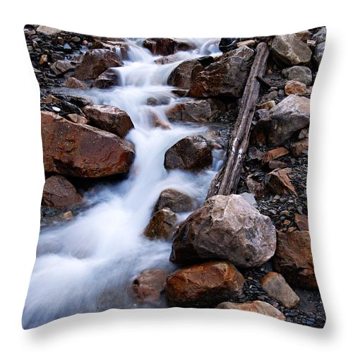Glacial Stream Throw Pillow featuring the photograph Glacial Stream by Larry Ricker