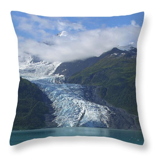 Glacier Bay Throw Pillow featuring the photograph Glacier Bay Afternoon by Sandra Bronstein