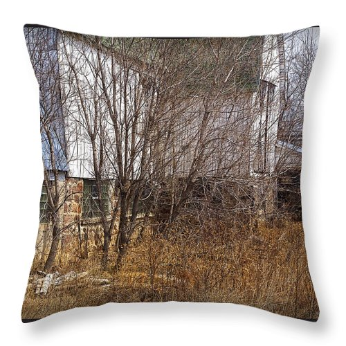 Barn Throw Pillow featuring the photograph Glass Block by Tim Nyberg