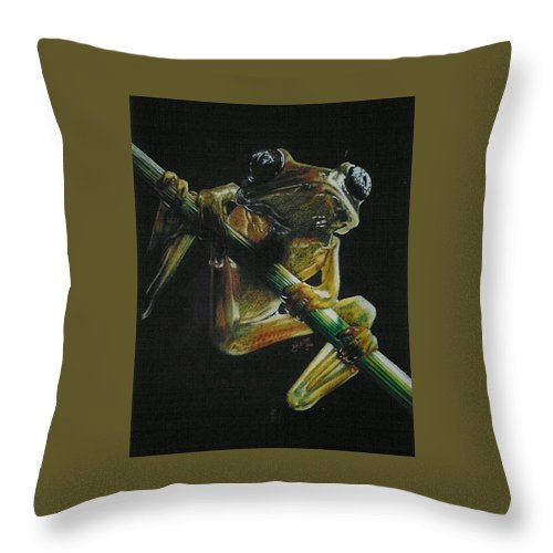 Frog Throw Pillow featuring the drawing Glass Large-eyed Frog by Barbara Keith