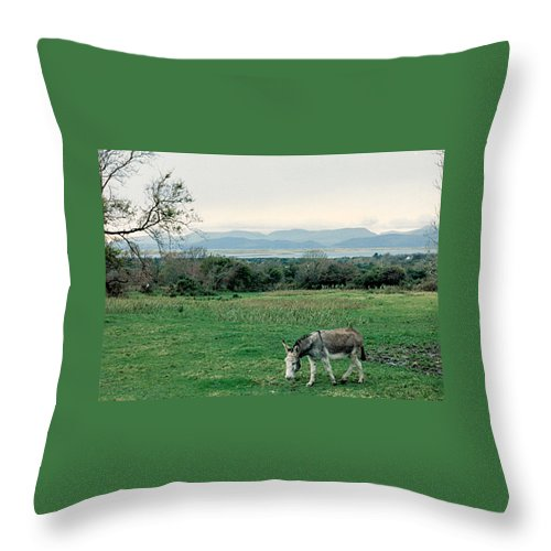 Ireland Throw Pillow featuring the photograph Glenbeigh Ireland by Lauri Novak
