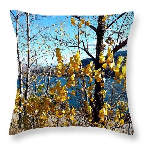 Kalamalka Lake Throw Pillow featuring the photograph Glimpse Of Kalamalka Lake by Will Borden