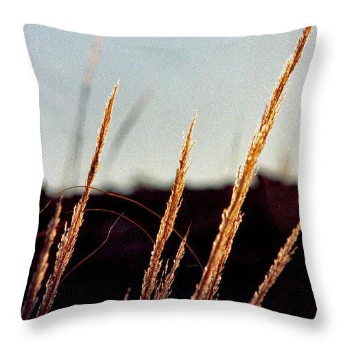 Grass Throw Pillow featuring the photograph Glistening Grass by Randy Oberg