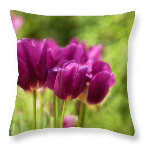 Tulips Throw Pillow featuring the photograph Glorious Days by Beve Brown-Clark Photography