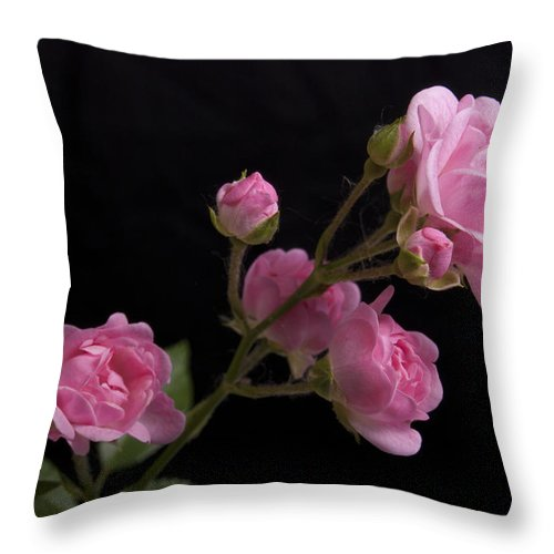Pink Throw Pillow featuring the photograph Gloriously Pink by Michael Peychich