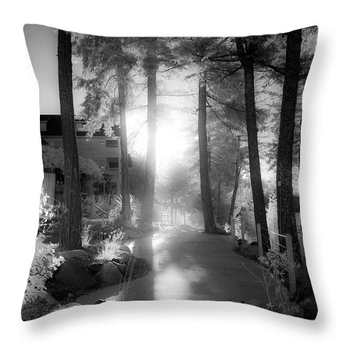 Scenic Throw Pillow featuring the photograph Glow by Lee Santa