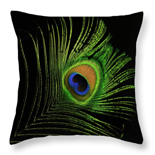 Glowing Throw Pillow featuring the photograph Glowing Peacock Eye by Douglas Barnett