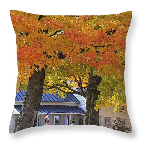Fall Throw Pillow featuring the photograph Go Right Please by Deborah Benoit