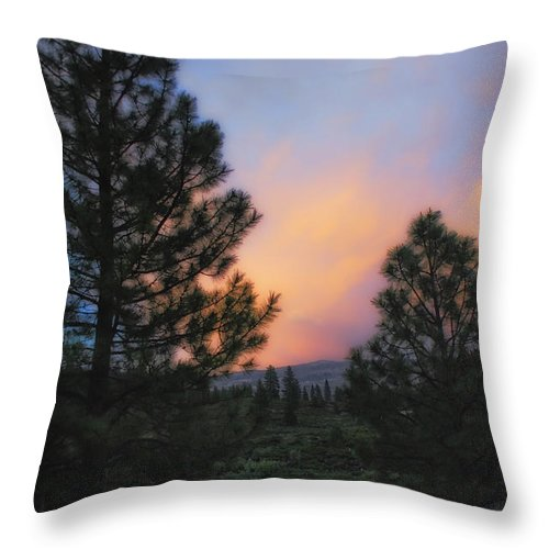 Landscape Throw Pillow featuring the photograph Go Softly Into The Night by Donna Blackhall