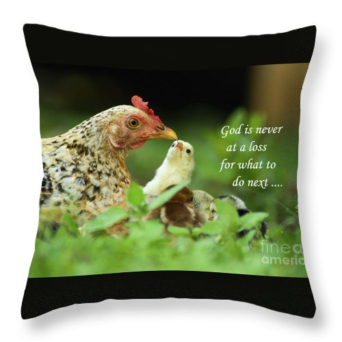 Throw Pillow featuring the photograph God Is Never At A Loss by Terrie Sizemore