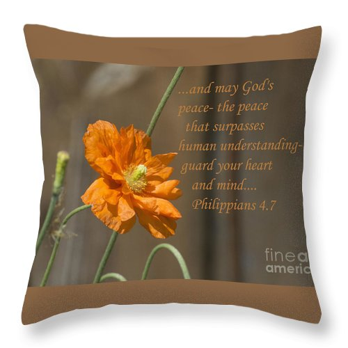 Throw Pillow featuring the photograph God's Peace by Terrie Sizemore