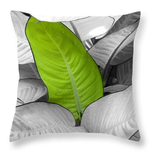Leaf Throw Pillow featuring the photograph Going Green Lighter by Marilyn Hunt